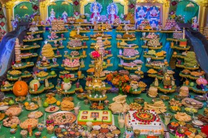 BAPS Shri Swaminarayan Mandir New Castle  2