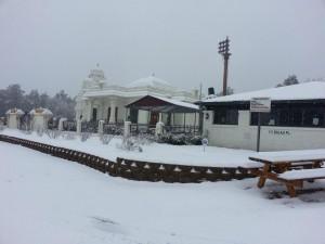 Sree Venkateswara Temple Cary  4